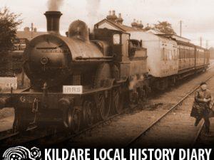 Railway Walk - Fairy Flax to Fletcher's @ Lawlor's Hotel | County Kildare | Ireland