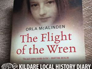 Blending fact with fiction - recent works on the Curragh Wrens @ Old Band Hall | Curragh Camp | County Kildare | Ireland