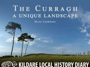 The Curragh - a unique landscape @ Town House Hotel | County Kildare | Ireland